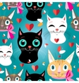 Pattern cats vector image vector image