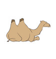 brown camel lies vector image