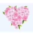 cherry heart vector image vector image