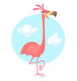 cool pretty cartoon pink flamingo vector image vector image