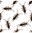 Seamless pattern with Earwig Forficula vector image vector image