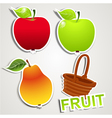 set of icons fruits vector image vector image