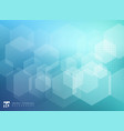 abstract geometric hexagon overlay pattern on vector image vector image