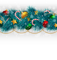 Christmas tree branches with adornments on vector image
