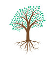 green tree with leaves on white background vector image