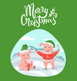 merry christmas lettering wishes and piglets gifts vector image vector image