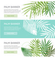 palm leaves banner template vector image