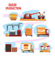 production of bread from wheat harvest to to vector image