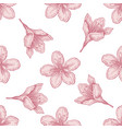 seamless pattern with hand drawn pastel plum vector image