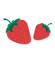 Strawberry fruit isolated on vector image