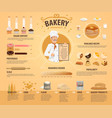 bakery and pastry infographics vector image vector image