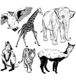 set hand drawn wild animal vector image
