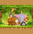 set of wildlife animals vector image vector image