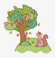 squirrel animal and tree with autumn leaves vector image