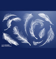 white realistic bird feathers feathers set vector image
