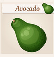 avocado cartoon icon series food and vector image vector image