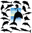 dolphin black silhouettes vector image vector image