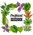 Frame with tropical plants and leaves Image for vector image vector image