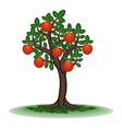 Fruit tree vector image vector image