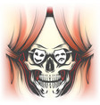 human skull and stage curtain vector image vector image