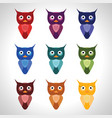 owl set vector image