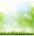 Grass Border With Bokeh Background vector image