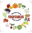background with isolated vegetables in a vector image vector image