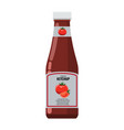 bottle of ketchup mock up with flat design style vector image