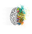 brain left and right vector image