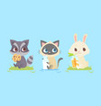 cute baby animals baby raccoon kitten bunny vector image vector image