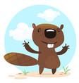 cute funny cartoon beaver vector image vector image