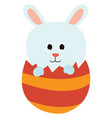 easter bunny on white background vector image vector image