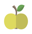 Flat style apple isolated vector image vector image