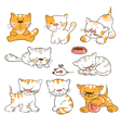 Funny cartoon kitten vector image