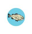Largemouth Bass Fish Side Circle Cartoon vector image vector image
