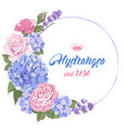 luxurious hydrangea and roses vector image vector image