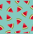 melon pattern vector image