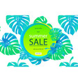 Sale banner poster with palm leaves