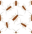 Seamless pattern with cockroach blattella vector image