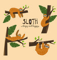 set cute funny sloth hanging on the tree sleepy vector image