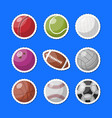 set of various sportive balls vector image
