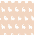 sitting rabbits vector image