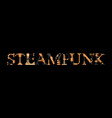 steampunk inscription vector image