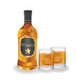 bottle and lass with whiskey vector image