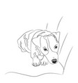 dog lies lines vector image vector image