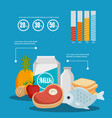 group of nutritive food infographic vector image