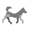 isolated dog icon vector image