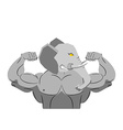 Strong angry elephant aggressive Evil beast vector image