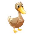 A brown baby duck vector image
