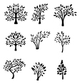 collection black tree silhouette vector image vector image
